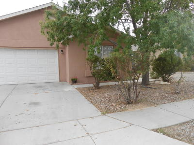 Albuquerque Single Family Home For Sale: 7320 Spring Flower Road SW