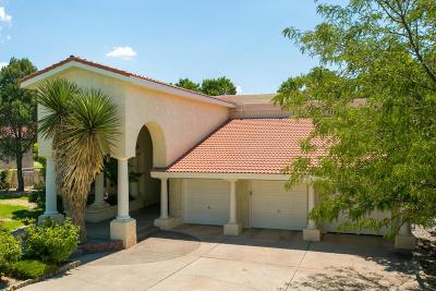 Albuquerque Single Family Home For Sale: 9706 Tanoan Drive NE