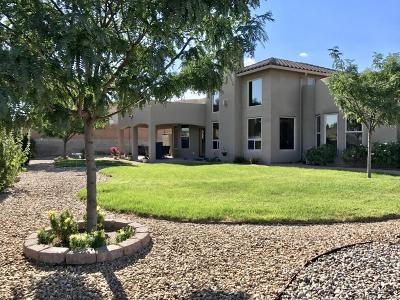 Rio Rancho Single Family Home For Sale: 2314 Garden Road NE