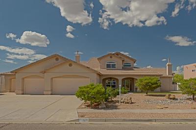 Rio Rancho Single Family Home For Sale: 3401 Calle Suenos SE