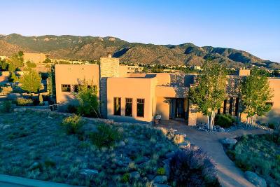 Albuquerque Single Family Home For Sale: 13208 Pino Ridge Place NE