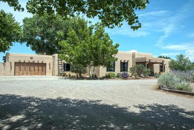 Albuquerque Single Family Home For Sale: 6902 Della Court SW