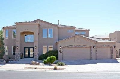Albuquerque Single Family Home For Sale: 8204 Via Encantada NE