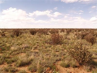 Rio Rancho Residential Lots & Land For Sale: 2610 Camelot Street NE