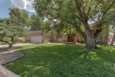 Albuquerque Single Family Home For Sale: 10012 Loretta Drive NW