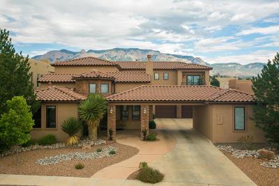 Albuquerque Single Family Home For Sale: 9400 Bear Mountain Trail NE