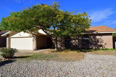 Albuquerque Single Family Home For Sale: 625 Dorado Place SE
