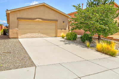 Rio Rancho Single Family Home For Sale: 1718 Agua Dulce Drive SE
