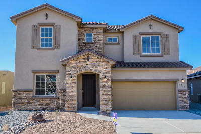 Rio Rancho Single Family Home For Sale: 7170 Wrangell Loop NE