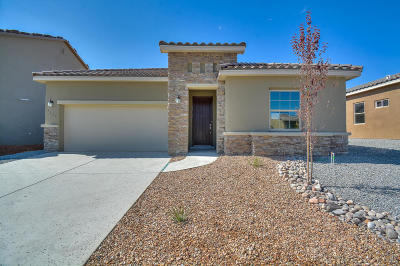 Rio Rancho Single Family Home For Sale: 7166 Wrangell Loop NE