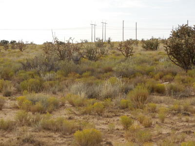 Rio Rancho Residential Lots & Land For Sale: Babson Court NW