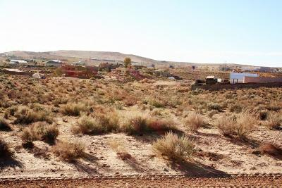 Rio Rancho Residential Lots & Land For Sale: 4538 47th Street NE