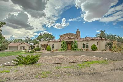 Valencia County Single Family Home For Sale: 1 La Sombra Drive