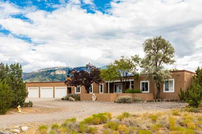 Placitas Single Family Home For Sale: 46 Placitas Trails Road
