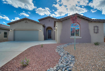 Albuquerque Single Family Home For Sale: 7412 Molas Road NW