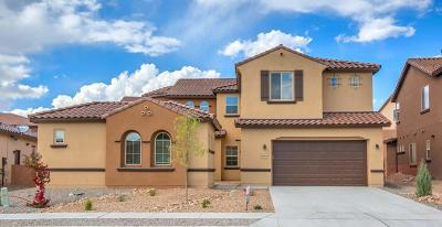 Rio Rancho Single Family Home For Sale: 4206 Pico Norte Lane NE