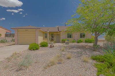 Rio Rancho Single Family Home For Sale: 560 Pyrite Drive NE