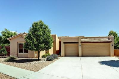 Albuquerque Single Family Home For Sale: 4915 Valle Romantico Way NW