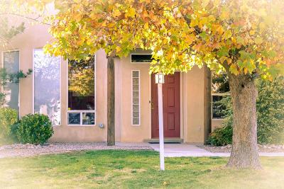 Rio Rancho Single Family Home For Sale: 3534 Calle Suenos SE