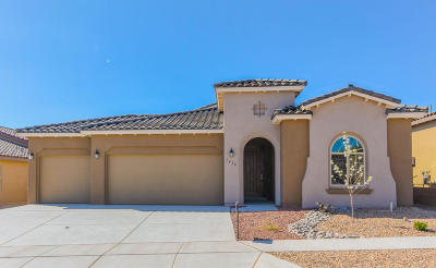 Albuquerque Single Family Home For Sale: 7416 Molas Road NW