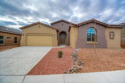 Albuquerque Single Family Home For Sale: 7420 Molas Road NW