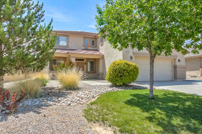 Rio Rancho Single Family Home For Sale: 1425 Montiano Loop SE
