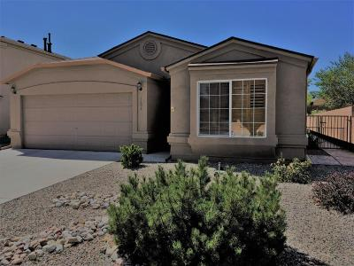 Rio Rancho Single Family Home For Sale: 1504 San Pedro Road NE