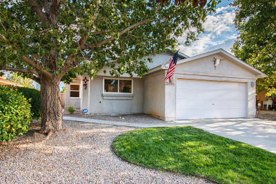Rio Rancho Single Family Home For Sale: 916 Tiffin Meadows Drive NE