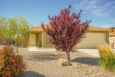 Rio Rancho Single Family Home For Sale: 241 El Camino Loop NW