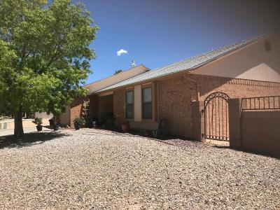 Valencia County Single Family Home For Sale: 1600 Arnold Palmer Loop