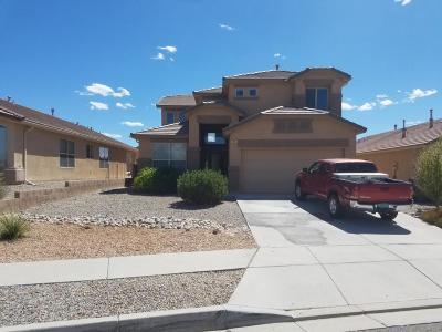 Rio Rancho Single Family Home For Sale: 2925 Violeta Circle SE