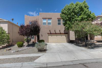 Rio Rancho Single Family Home For Sale: 1719 Agua Dulce Drive SE