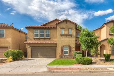 Rio Rancho Single Family Home For Sale: 3509 Plano Vista Road NE