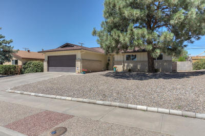 Albuquerque Single Family Home For Sale: 9025 La Barranca Avenue NE