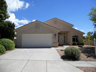 Albuquerque Single Family Home For Sale: 12500 Mountain Ridge Place NE