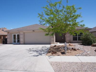 Albuquerque Single Family Home For Sale: 8604 Casa Verde Avenue NW