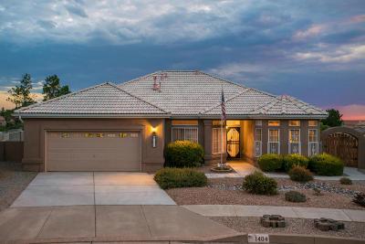 Albuquerque Single Family Home For Sale: 1404 White Rock Place NE
