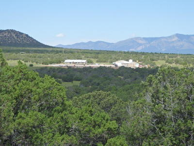 Torrance County Farm & Ranch For Sale: Mesa Draw Ranch
