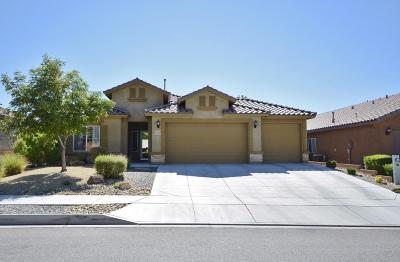 Albuquerque, Rio Rancho Single Family Home For Sale: 425 Paseo Vista Loop NE