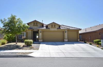 Rio Rancho Single Family Home For Sale: 425 Paseo Vista Loop NE