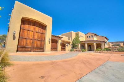 Albuquerque Single Family Home For Sale: 10409 Los Suenos Court NW
