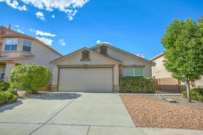 Albuquerque Single Family Home For Sale: 10115 Corral Gate Lane SW