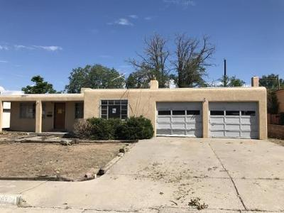 Albuquerque Single Family Home For Sale: 11005 Prospect Avenue NE