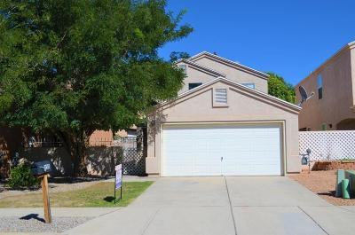 Valencia County Single Family Home For Sale: 450 Little Wings Loop SW