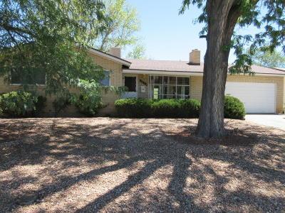 Albuquerque Single Family Home For Sale: 3024 Carolina Street NE