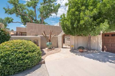 Albuquerque Single Family Home For Sale: 9614 Thomas Lane NW