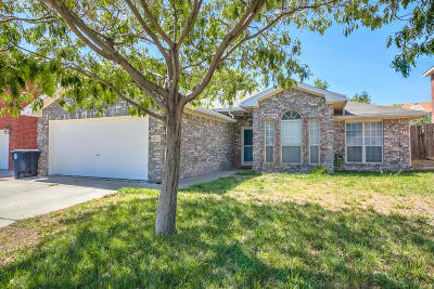 Albuquerque Single Family Home For Sale: 4612 Sam Bratton Avenue NW