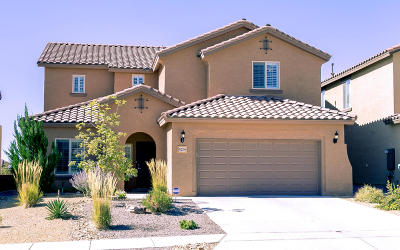 Rio Rancho Single Family Home For Sale: 523 Palo Alto Drive NE