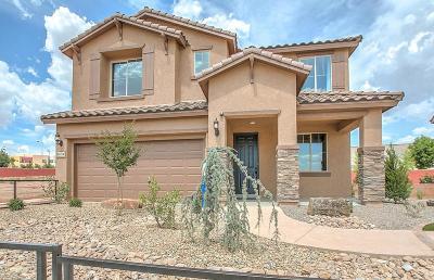 Rio Rancho Single Family Home For Sale: 3411 Llano Vista Loop NE