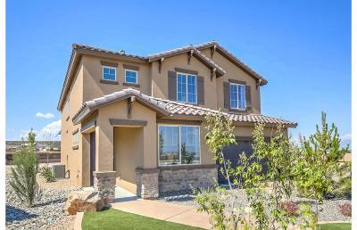 Rio Rancho Single Family Home For Sale: 3407 Llano Vista Loop NE